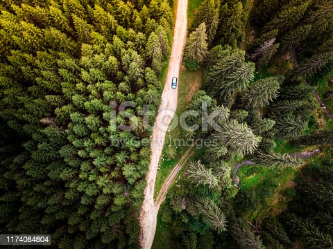 Color image depicting an aerial view - image shot via drone -  of a car driving on a winding mountain road in the middle of thick forest. The narrow dirt road is flanked entirely by thick green forest.
