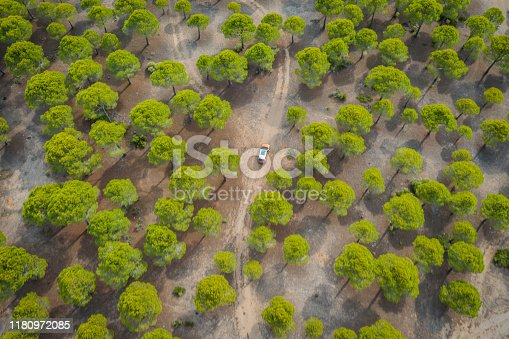 1061550162 istock photo Aerial view of car on winding forest road in wilderness 1180972085