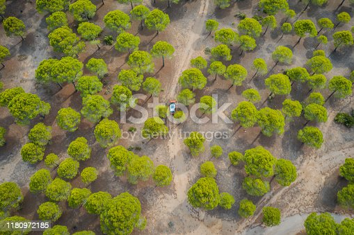 1061550162 istock photo Aerial view of car on winding forest road in wilderness 1180972185