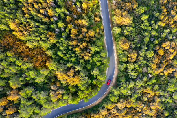 Luftaufnahme von Autos auf einer Landstraße – Foto