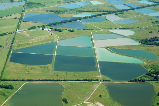 istock Aerial View of Catfish Farm Ponds 171211255