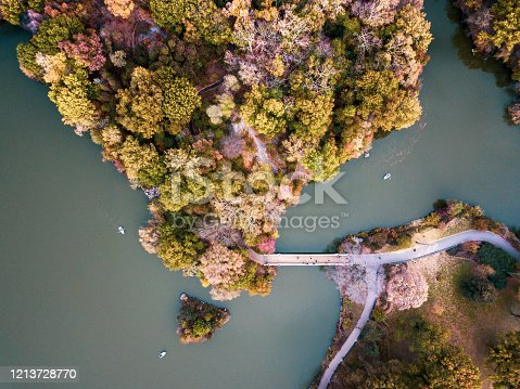 Aerial view of Central park lake in autumn. New York fall