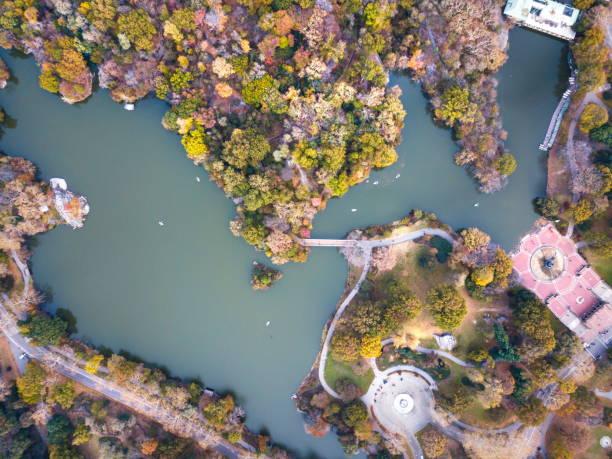 aerial view of central park lake in autumn - central park manhattan zdjęcia i obrazy z banku zdjęć