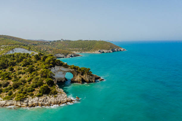 Aerial view of coastline with natural arch, Vieste, Puglia, Italy stock photo