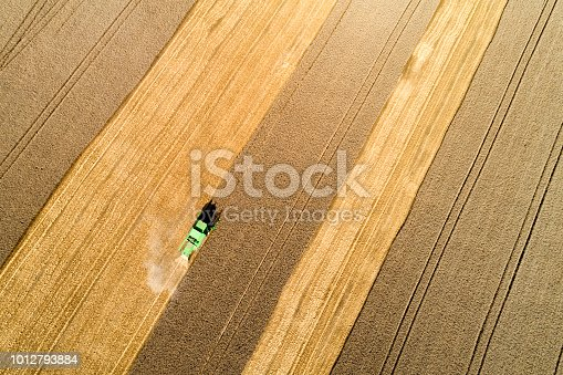 Aerial view of combine harvester harvesting wheat in field, Baden Württemberg, Southern Germany