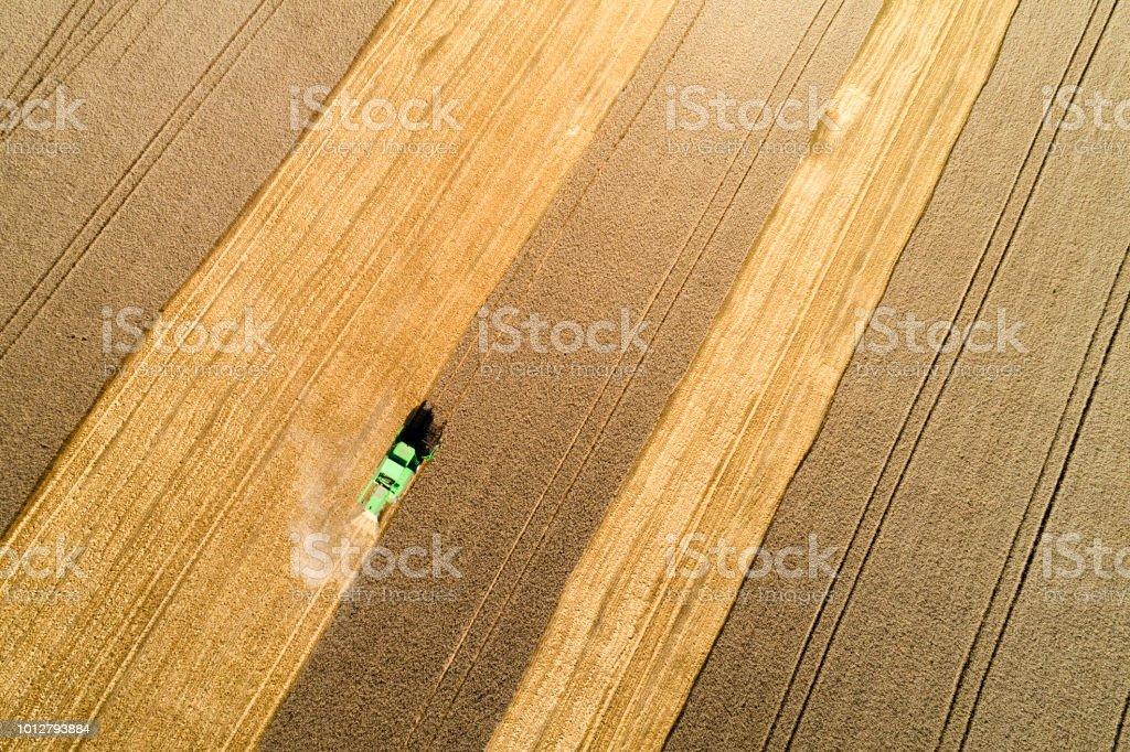Luftaufnahme der Mähdrescher beim Ernten von Weizen im Feld – Foto