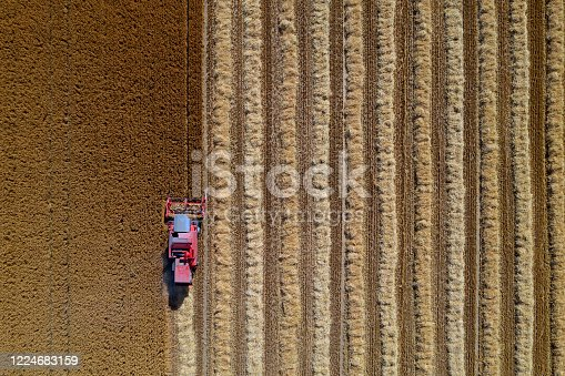 Aerial view of combine harvester harvesting wheat in field.