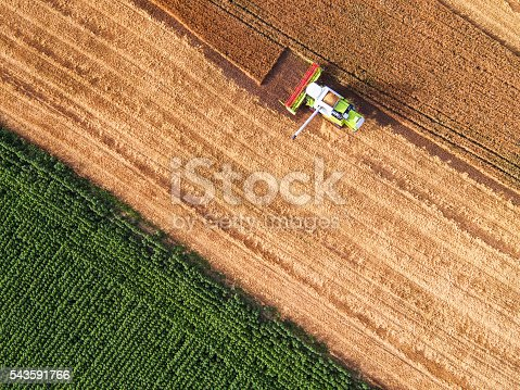 istock Aerial view of combine on harvest field 543591766