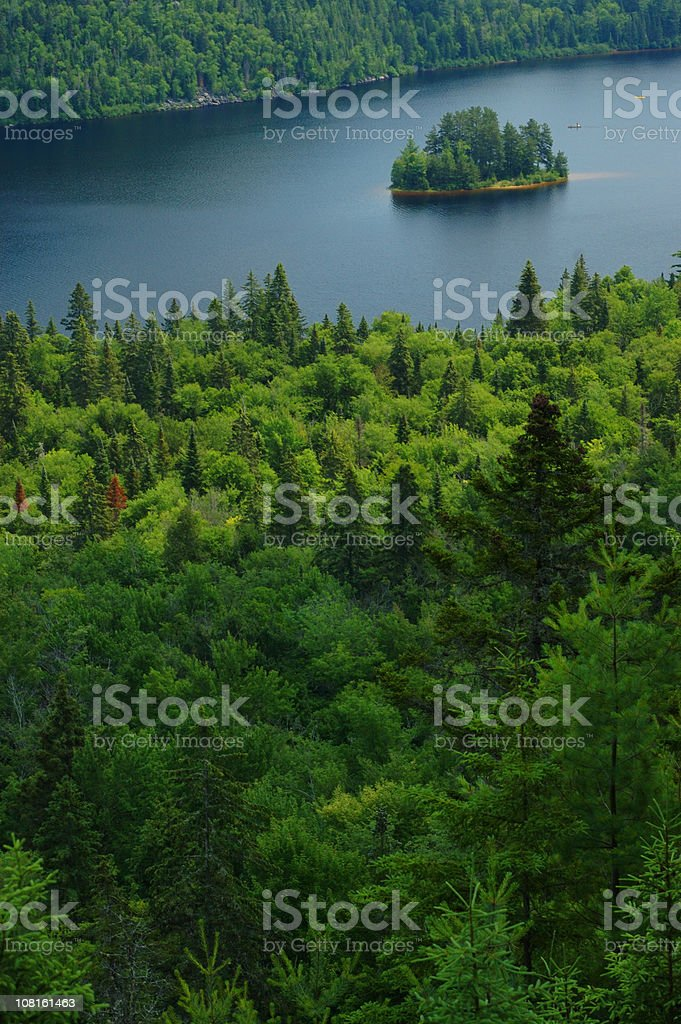 Aerial View of Coniferous Forest and River in Quebec royalty-free stock photo