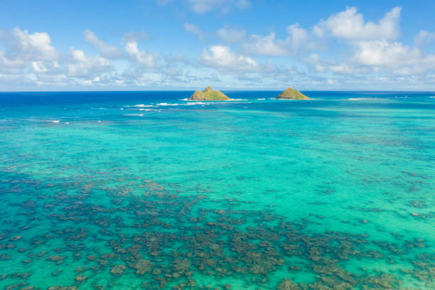 Aerial view of coral reef in Oahu, Hawaii, USA stock photo