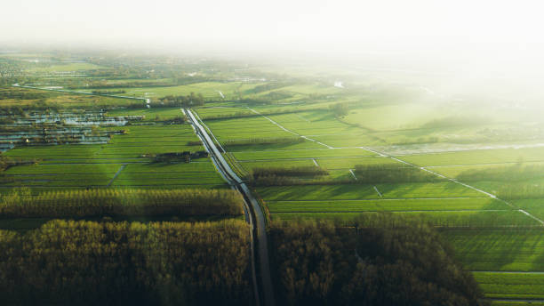 Aerial view of country road and green fields during sunset in Netherlands stock photo