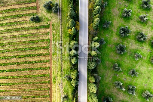 Aerial view of country road through cypress trees, olive trees and cultivated land. Chianti region, Tuscany, Italy