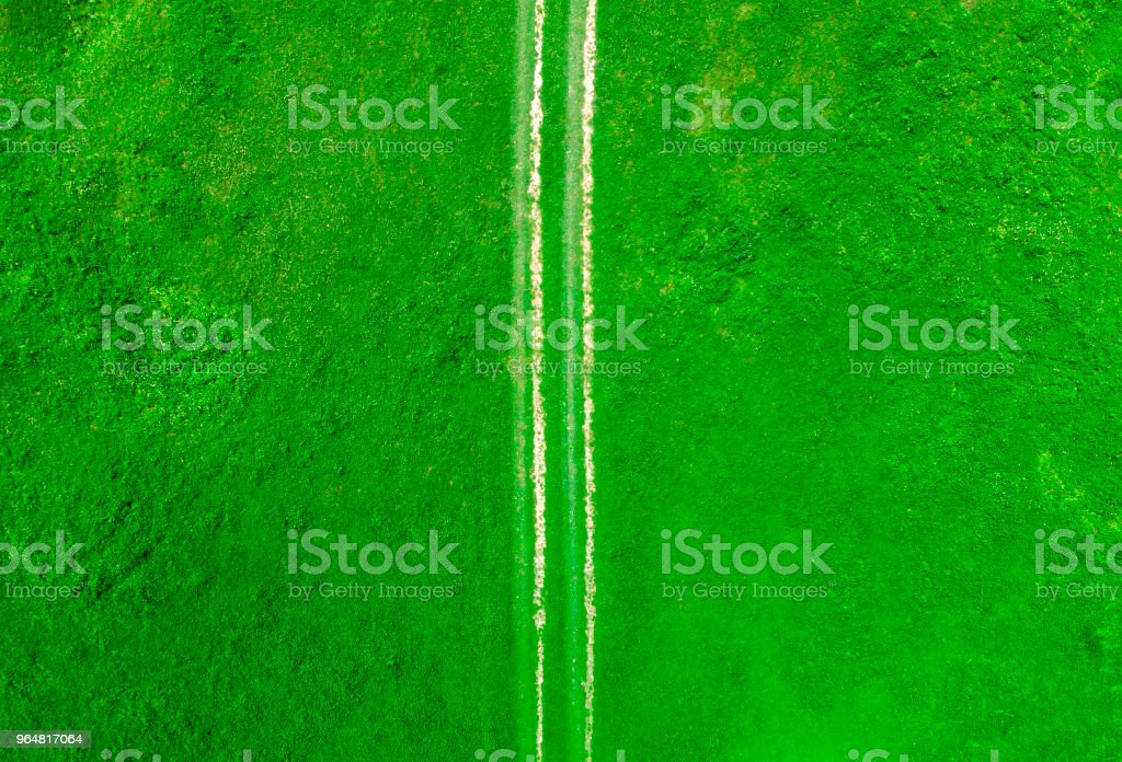 aerial view of countryside road in the green meadow royalty-free stock photo