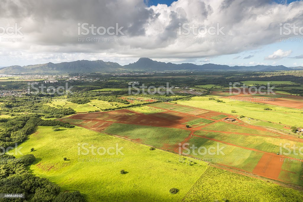 Aerial View Of Cultivated Land Kauai Hawaii Stock Photo