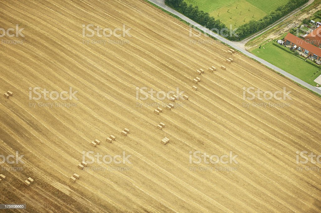 Aerial view of cultivated land with beautiful lines royalty-free stock photo