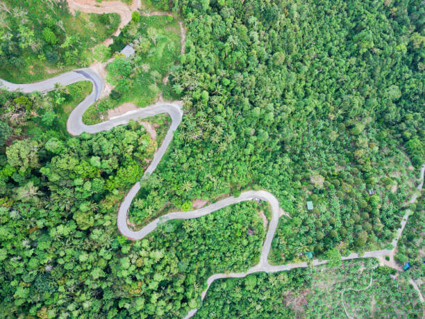 Aerial view of curvy mountain road through a jungle stock photo