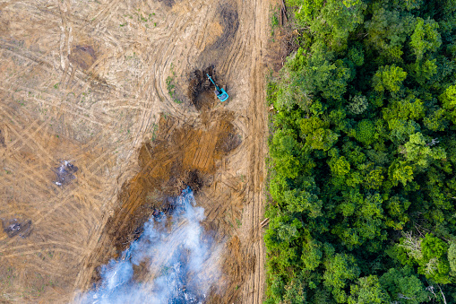Aerial view of deforestation.  Rainforest being removed to make way for palm oil and rubber plantations