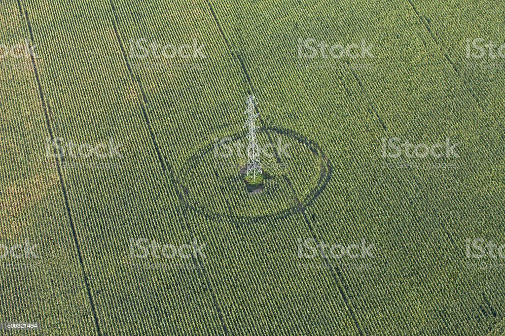 aerial view of electric post on harvest field stock photo