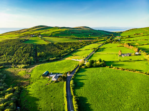 Aerial view of endless lush pastures and farmlands of Ireland. Beautiful Irish countryside with green fields and meadows. Rural landscape on sunset. stock photo