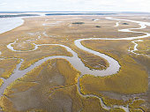 Aerial image of winding creeks in a large estuary on Edisto Island.