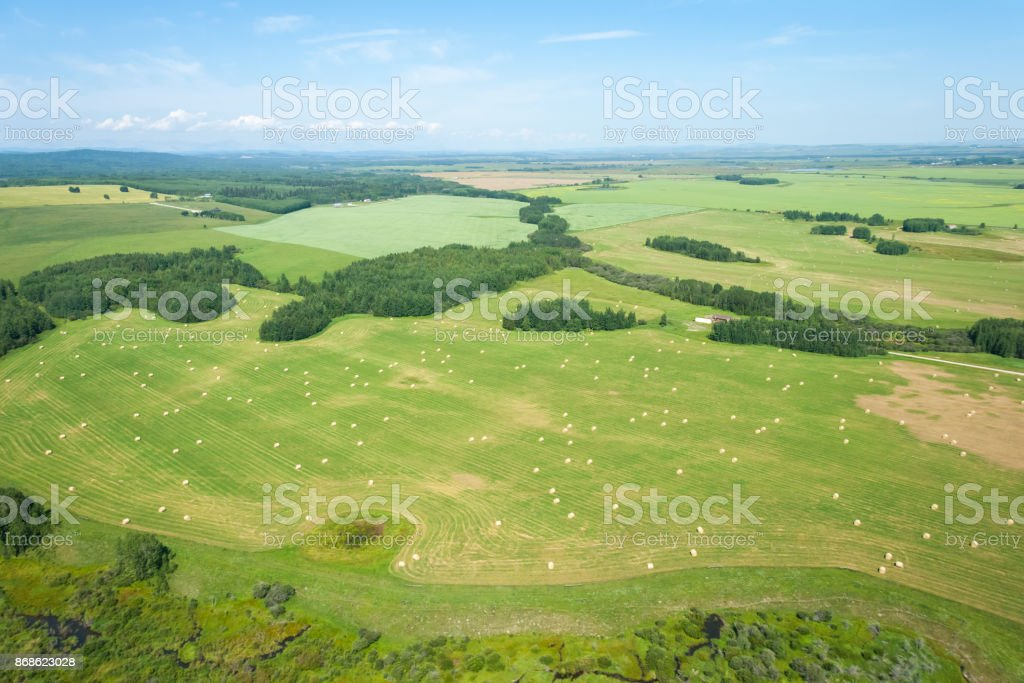 Aerial view of farm land and hey barrels during summer season. stock photo