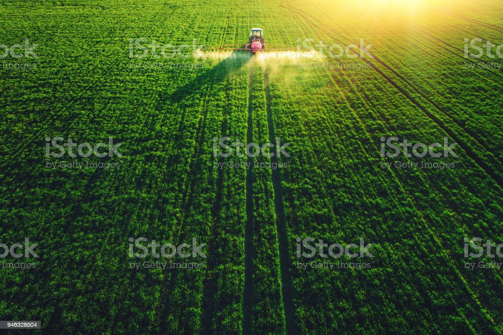 Aerial view of farming tractor plowing and spraying on big green field. – zdjęcie