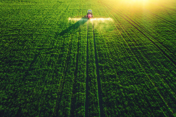 aerial view of farming tractor plowing and spraying on big green field. - agriculture stock pictures, royalty-free photos & images