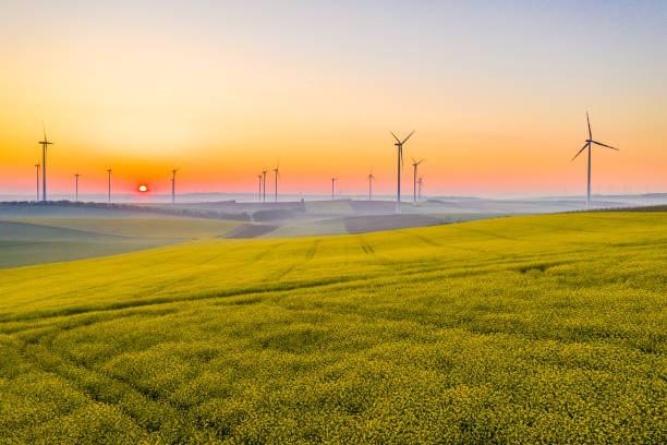 Aerial view of fields and wind turbines at sunrise. stock photo