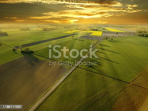 A wonderful, warm sunrise over spring, colorful cereal fields.