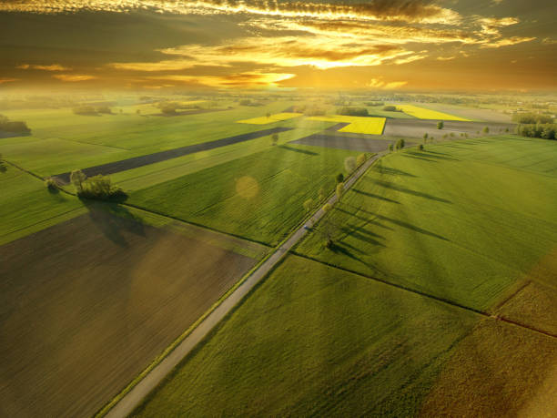 Aerial view of fields over the fields A wonderful, warm sunrise over spring, colorful cereal fields. grounds stock pictures, royalty-free photos & images