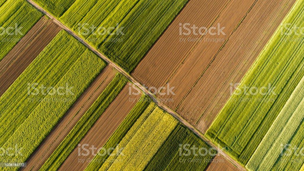 Alanlarının havadan görünümü - Royalty-free Avrupa Stok görsel