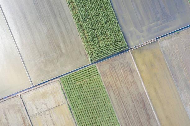 Luftaufnahme von Feldern – Foto