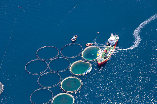 Aerial view of fish farm
