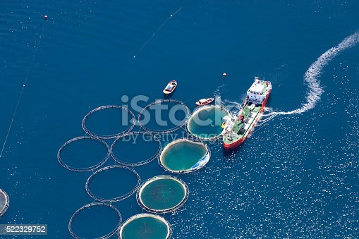 istock Aerial view of fish farm 522329752
