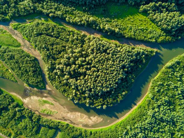 luftbild von wald und fluss - aerial overview soil stock-fotos und bilder