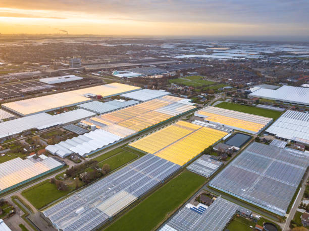 Aerial view of giant Greenhouse horticulture area stock photo