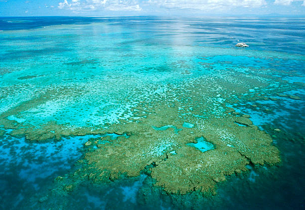 Aerial View Of Great Barrier Reef stock photo