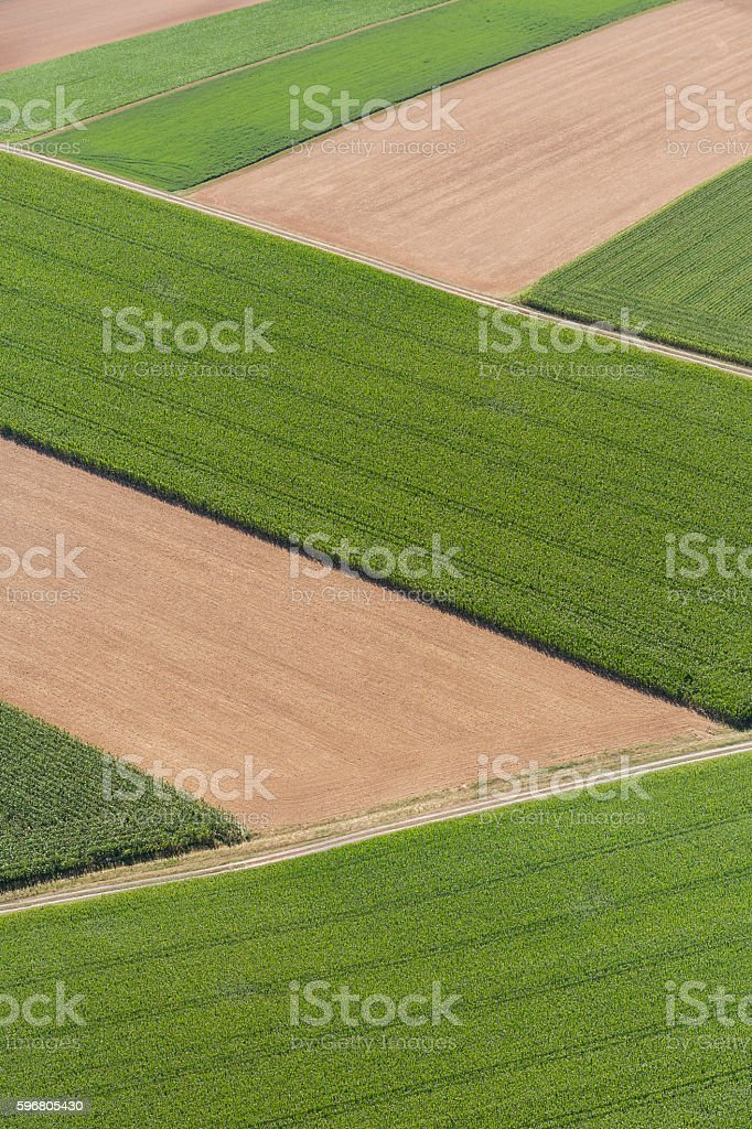 Aerial view of green corn and yellow wheat field zigzag stock photo
