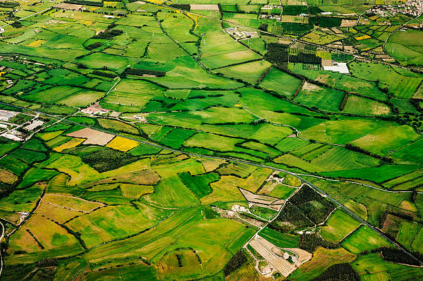 Aerial view of green farmland stock photo