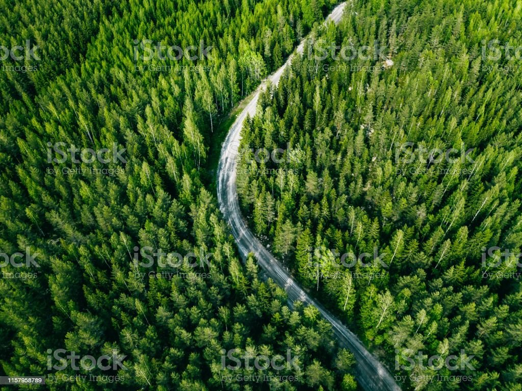Aerial view of green summer forest road. Curved road from above.
