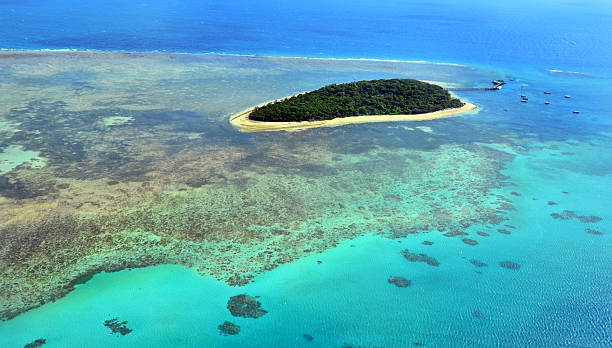 aerial view of green island reef great barrier reef queensland - great barrier reef marine park stock pictures, royalty-free photos & images