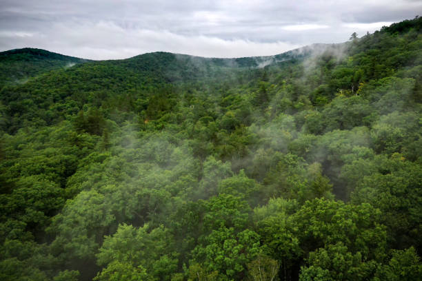 Luftaufnahme von Green Mountains, Vermont, USA – Foto