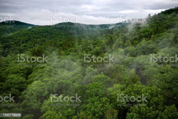 Photo of Aerial view of Green Mountains, Vermont, USA