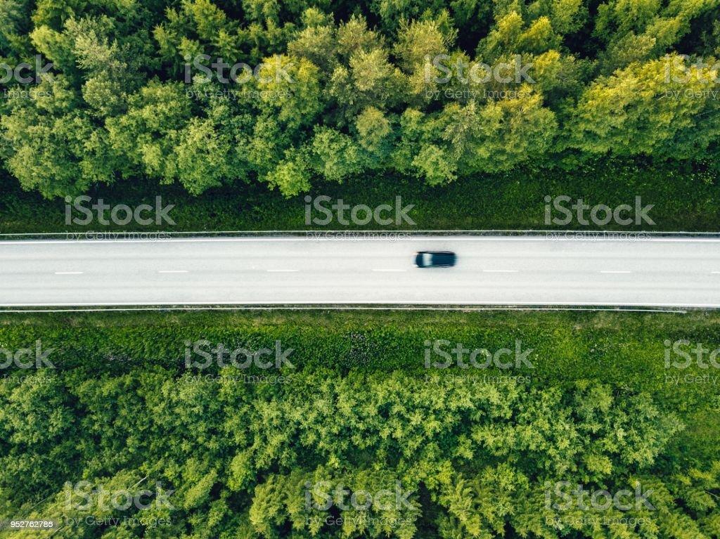 Luftaufnahme des grünen Sommer Wald mit einer Straße. – Foto