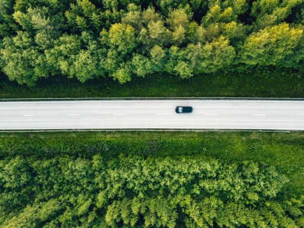 flygfoto över gröna sommaren skog med en väg. - summer sweden bildbanksfoton och bilder