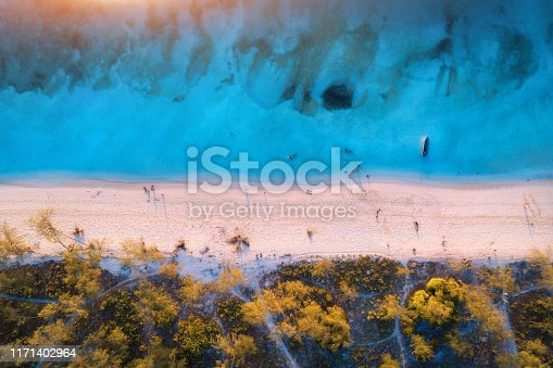 1136453253 istock photo Aerial view of green trees on the sandy beach and blue sea at sunset. Summer holiday. Indian Ocean in Africa. Tropical landscape with palm trees, white sand, clear blue water, waves. Top view. Nature 1171402964