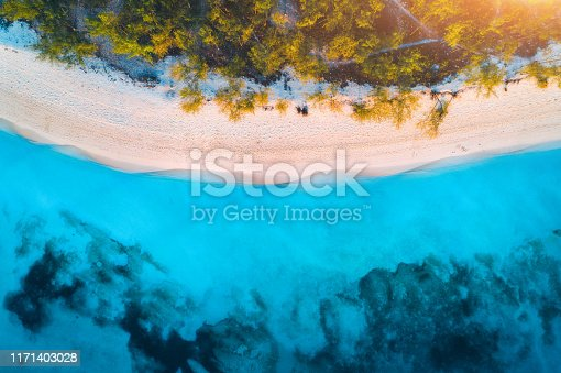 1136453253 istock photo Aerial view of green trees on the sandy beach and blue sea at sunset. Summer holiday. Indian Ocean in Africa. Tropical landscape with palm trees, white sand, clear blue water, waves. Top view. Nature 1171403028
