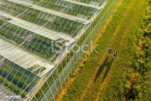 Aerial view shot of a greenhouse roof and two people carrying a crate with vegetables