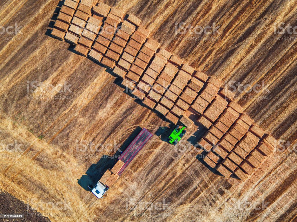 Aerial view of harvest field and hay bales stock photo