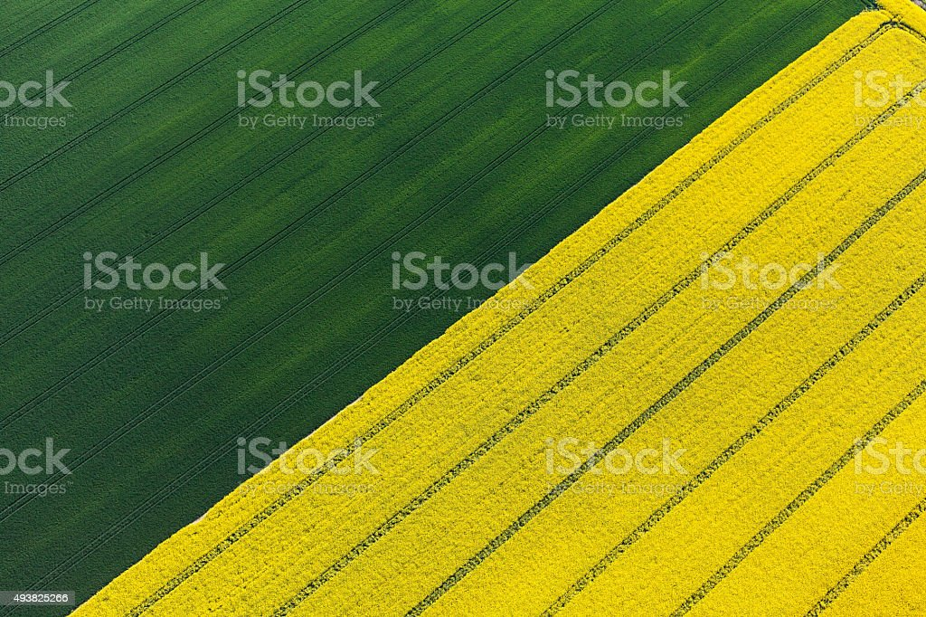 aerial view of harvest  fields stock photo
